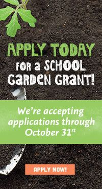 Whole Kids Foundation - Schools - School Garden Program; up to $2k but must be located on school grounds