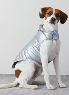 American Beagle Outfitters Puffer Jacket