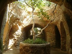 """Baldasare Forestiere's underground gardens in Fresno. """"To make something with lots of money, that is easy.  But to make something out of nothing - that now, is something!""""                                                                                                       Baldassare Forestiere"""