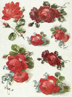 Ricepaper / Decoupage paper, Scrapbooking Sheets Red Roses | eBay