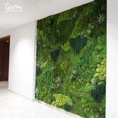 Moss Wall Art, Moss Art, Vertical Garden Wall, Vertical Gardens, Succulent Wall Art, Succulent Planters, Halls, Design Living Room, Olive Garden
