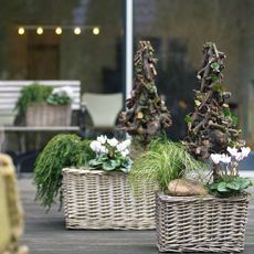 Winter on balcony and terrace #christmas Arrangement www.barendsen.nl