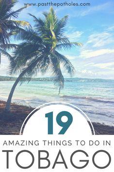 19 Amazing Things to do in Tobago . #tobago #thingstodo #activities #vacation #ecotourism #sports #adventure #relax #beach #caribbean #island #trinidadandtobago