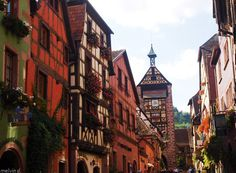 Alsace-Ribauville Photo Melvin d. photographies