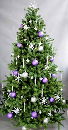How about purple and white?