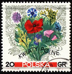 Google Image Result for http://img.cliparto.com/pic/xl/189517/3181190-bouquet-of-wildflowers-on-postage-stamp.jpg