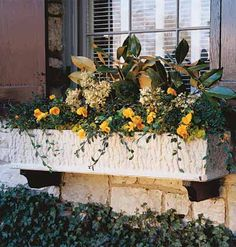 ,My apartment has 6 large concrete window sills;each can hold a large window box. Got me thinkin' bout spring!