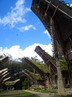 Tongkonan are the traditional Torajan ancestral houses. KE'TE KESU' Village | Tana Toraja, Indonesia