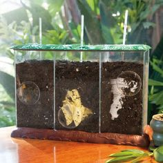 See-Through Compost Container: Green Science: Recycle from Educational Insights Now You See it; Now You Don't...Study the Green Science of Composting... Three separate, water tight, aerated, clear vie