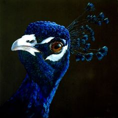 "art-mysecondname: "" Peacock - Unknown artist """