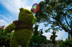 Epcot: Winnie the Pooh / Flower and Garden Festival