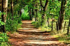Promenade  ( Explore 28-07-2014