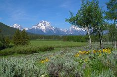 Mount Moran (12,605 feet) is a mountain in Grand Teton National Park of western Wyoming, USA. The mountain is named for Thomas Moran, an American western frontier landscape artist. Mount Moran dominates the northern section of the Teton Range rising 6,000 feet above Jackson Lake. Several active glaciers exist on the mountain with Skillet Glacier plainly visible on the monolithic east face.  Starting at $4.95