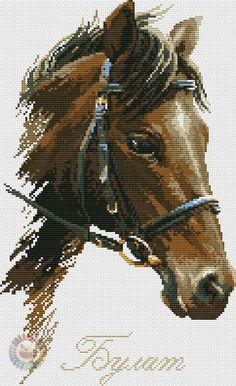 This Pin was discovered by * V Cross Stitch Horse, Cross Stitch Animals, Counted Cross Stitch Patterns, Cross Stitch Charts, Cross Stitch Embroidery, Embroidery Patterns, Cross Stitch Numbers, Cross Stitch Pictures, Horse Love