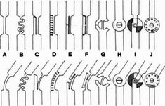 Fig. 1. Ten types of plastic joints produced f | O&P Digital Resource Library