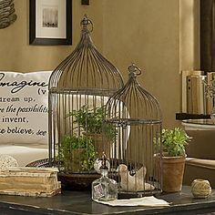bird cages with potted plants