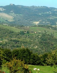 La Ginestra, Umbria. We follow the methods of organic farming and biodynamic and permaculture. We only use products from organic farming, biodynamic and permaculture in our own production or from other organic biodynamic farms in the area http://www.organicholidays.co.uk/at/471.htm