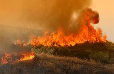 Σε εξέλιξη αγροτοδασική πυρκαγιά στην περιοχή Κοκκινόρεμα Μαλαντρενίου Αργολίδας