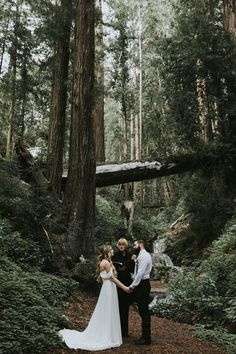 The Big Sur Elopement of Your Wildest Dreams - Wedding Ceremony Inspiration - Big Sur Wedding, Wedding In The Woods, Forest Wedding, Woodland Wedding, Elope Wedding, Wedding Bells, Dream Wedding, Elopement Wedding, Rustic Wedding