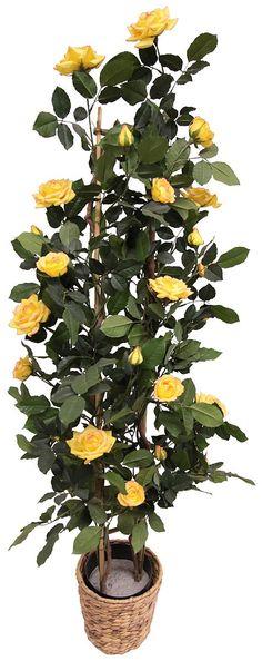 Eleganz und Anmut - dafür steht dieses Gesteck. Die Kunstblume von Home affaire sieht mit ihren Blüten besonders natürlich aus - Blüten, Blätter und Knospen aus textilem Gewebe sind detailgetreu einer echten Blume nachempfunden und erfreuen so das Auge des Betrachters.  Der märchenhafte Rosenbusch mit leuchtend gelb-orangen Blüten und weiß wirkt immer frisch. Das künstliche Rosengewächs wir in ...