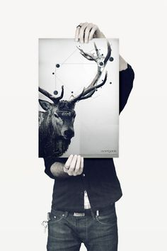 Deer + Vectors?! Discover Maxime Quoilin poster #graphic #design