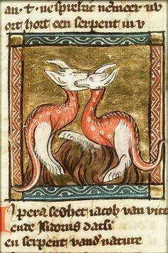Aspis, De serpentum draconum et liber (Koninklijke Bibliotheek The Hague, KA 16). Pd. Netherlands, 1350.