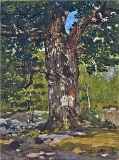 Claude Monet - The Bodmer Oak, 1865 English Oaks are my favorite tree and this is a lovely painting of a French Oak tree, which is almost identical tree species by Claude Monet. R McN Claude Monet, Pierre Auguste Renoir, Manet, Landscape Art, Landscape Paintings, Artist Monet, Monet Paintings, Acrylic Paintings, Impressionist Paintings