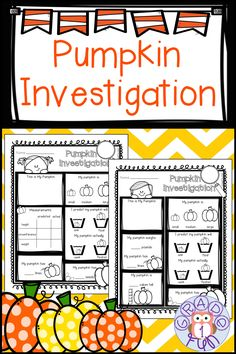 Pumpkin investigation sheet to use after picking pumpkins! Have your students put that pumpkin to good use and practice math and science skills they have learned in class! After drawing their pumpkins, students will measure it, count how many lines and seeds it has, then see if it sinks or floats! Fun pumpkin activity for October! #October #pumpkinmath #pumpkinscience #homeschooling