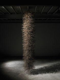 Jae-Hyo Lee, gathered twig installation
