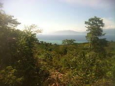 Panoramio - Photos by idjory > Ile de la Tortue