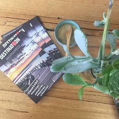 On my travels I've been dropping of this handy little @destinationwarrnambool magazine everywhere. Keep a look out for it. And if you want some dropped off. Hit me up. I'll bring some around! #realdistribtion #socialcatnetwork #shop3280 #shopnorthpoint @silverfoxcoffeestore