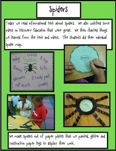 Golden Gang Kindergarten: Day 2 With Spiders Primary Science, Science Classroom, Science Activities, Reggio Emilia, Observation Examples, Learning Stories Examples, Line Math, Emergent Curriculum, Project Based Learning