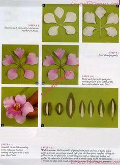 Fondant Flower Tutorial, Fondant Flowers, Sugar Flowers, Paper Flowers, Cold Porcelain Flowers, Ceramic Flowers, Orchid Cake, Gum Paste Flowers, Polymer Clay Flowers