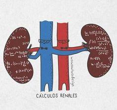 20121101200911-calculosrenales.jpg