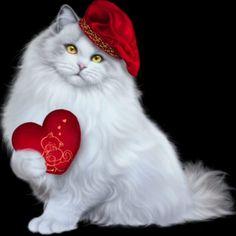 517 Beğenme, 17 Yorum - Instagram'da Maria Popova (@user89660) Kittens Cutest, Cats And Kittens, Cute Cats, Kitten Wallpaper, Kitten Cartoon, Kitten Images, Deer Art, Cute Clipart, Funny Cats
