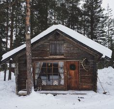 The perfect cabin