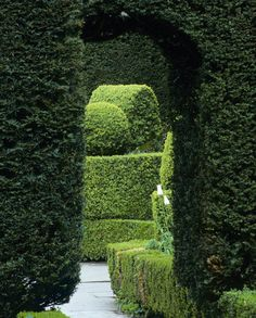 One day i would love something like this that would open up to a secret garden