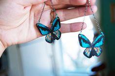 Encogimiento Goliat Ornithoptera mariposa por PeriwinkleNuthatch