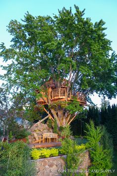 Beautiful Tree Houses, Cool Tree Houses, Silver Maple Tree, Silo House, Tree House Designs, Tree Tops, Plantation, In The Tree, Play Houses