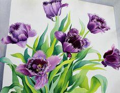 Christopher Ryland SBA (b.1951) — Purple Fringe Tulips, 2015 (900x699)