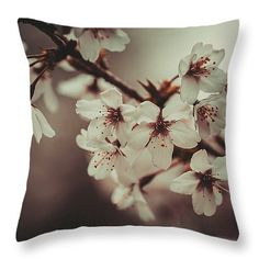 Last Spring by Jenny Rainbow. #Spring #FineArtPhotography #Sakura #SpringTime #WallArt #IdeasForHome #ArtForHome #Nostalgia #Pillow #Cusgion #JennyRainbowFineArtPhotography #Cherry #CherryBlossom #HealingArt #Past