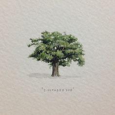 A (tiny) tree.