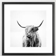 https://society6.com/product/portrait-of-a-highland-cow_framed-print#s6-2099401p21a12v60a13v58