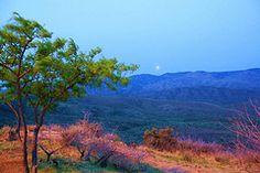 Moon setting over the Arizona desert by Jeanie Sorrells Beach.