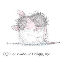House Mouse napping on a cotton ball.