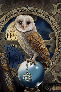 Owl Art, Bird Art, Canvas Art Prints, Canvas Wall Art, Lisa Parker, Harry Potter Owl, Cool Paintings, Paint By Number, Artist