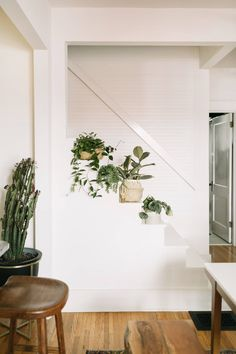 This is so cool! What a great spot to put plants...if I ever have an open staircase