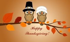 Thanksgiving Funny Images Photos Wallpapers HD