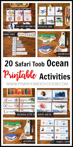 This is a Montessori-inspired learning activity designed to go along with the Safari Toob Ocean Animals educational toob toy. This is designed for preschoolers, prek, kindergarten and first grade students and perfect for Montessori environment. Ocean Activities, Preschool Learning Activities, Homeschool Kindergarten, Preschool Schedule, Preschool Prep, Homeschool Worksheets, Homeschooling Resources, Stem For Kids, Science For Kids