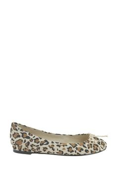 French Follies  Fafi Ballet Flat with Bow